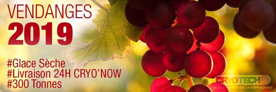 Vendanges 2019 – Glace sèche pour vos récoltes