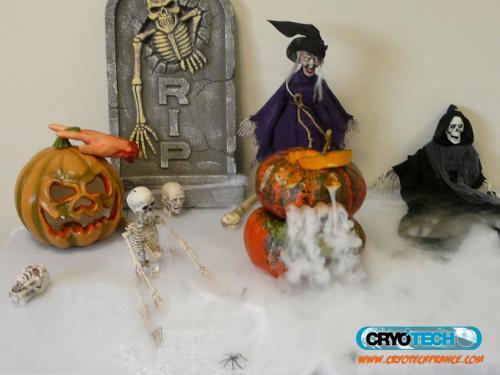 CRYOTECH - Halloween - effet de fumée 3