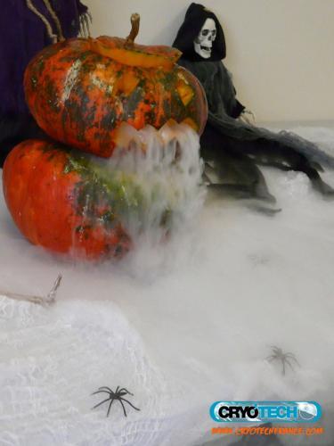 CRYOTECH - Halloween - effet de fumée 5